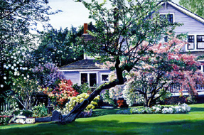 Mrs. Marler's House. Click here to see enlargement. © Ruth Mayer Fine Art.